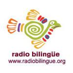 radiobil-2