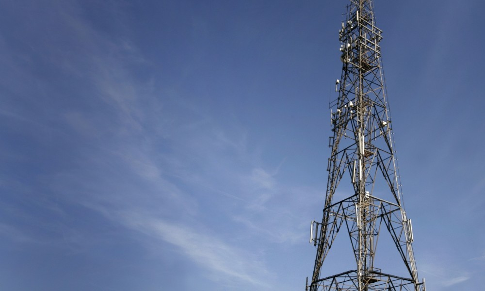 To Participate or Not: The Spectrum Auction